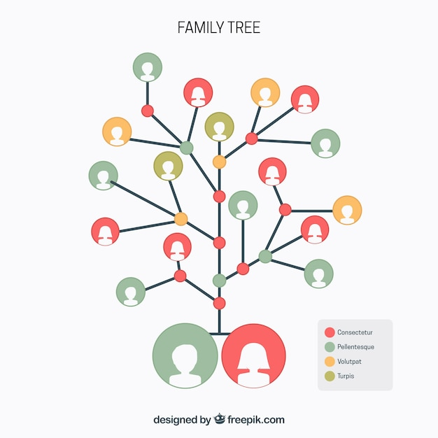 Family tree with circles in different colors 無料ベクター