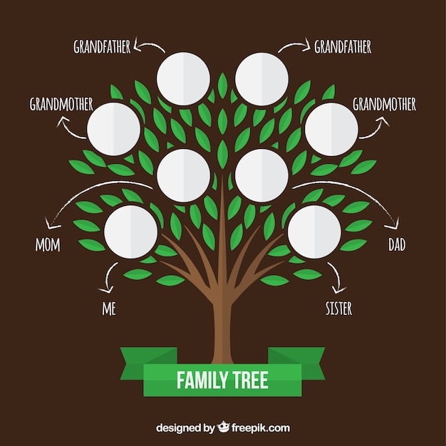 Family tree with green leaves and arrows Free Vector