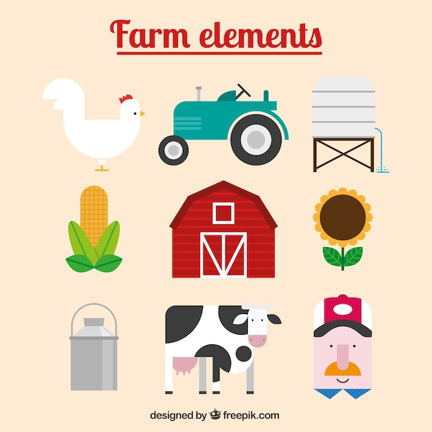 Farm animal and accessories in flat\ design