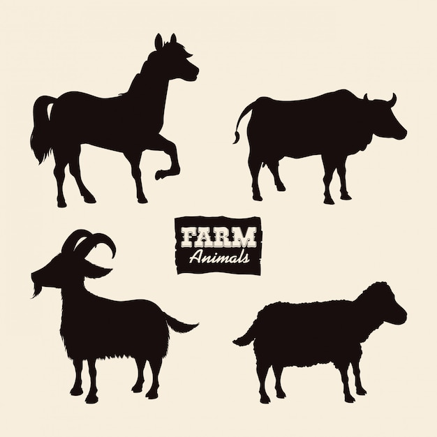 Farm animal design. Premium Vector