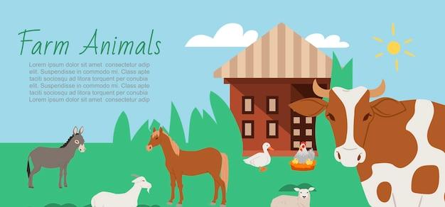 Ферма животных и сельский пейзаж баннер шаблон Premium векторы
