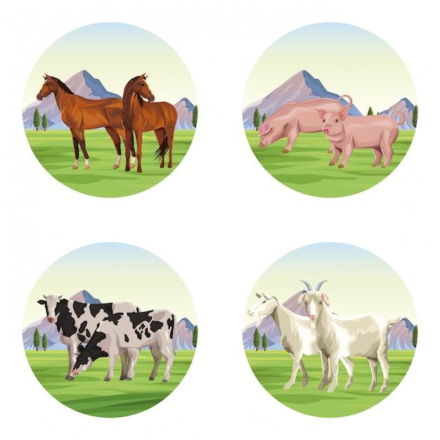 Farm animals cartoons Premium Vector