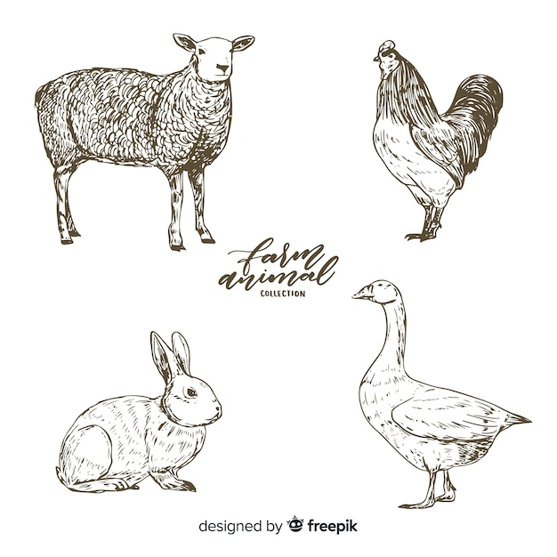 Farm animals collection in hand drawn style Free Vector