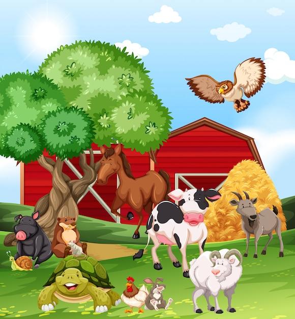 Farm animals living on the farm Free Vector
