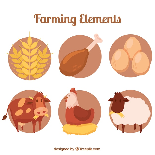 Farm animals with organic products