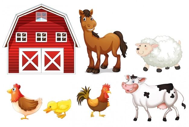 Animali da fattoria Vettore gratuito