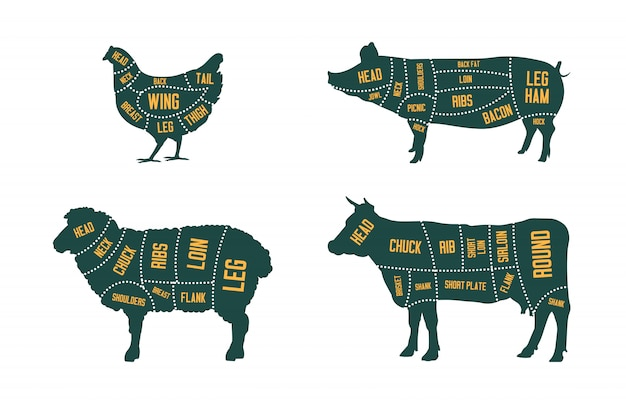 Farm cattle set Free Vector