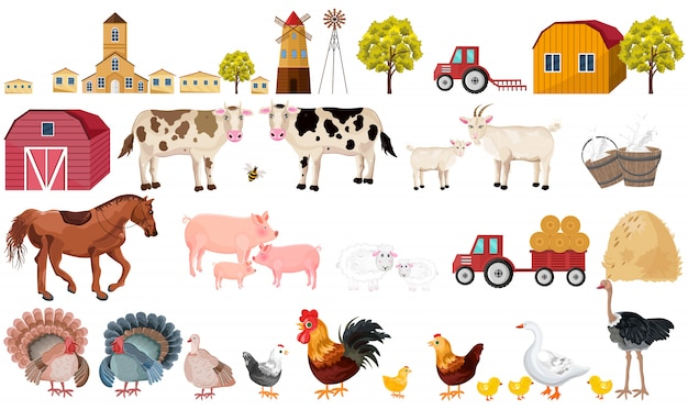 Farm collection Premium Vector