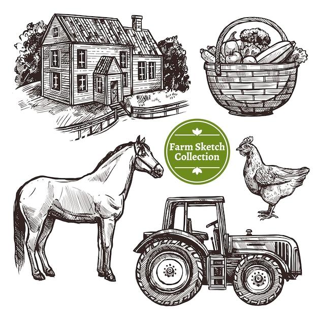 Farm hand drawn sketch set Free Vector