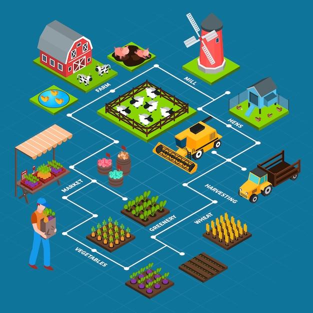 Farm isometric flowchart Free Vector