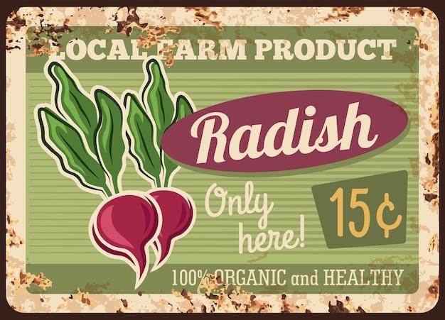 Ферма редьки ржавая металлическая пластина. редис красный с листьями, спелый корнеплод. Premium векторы