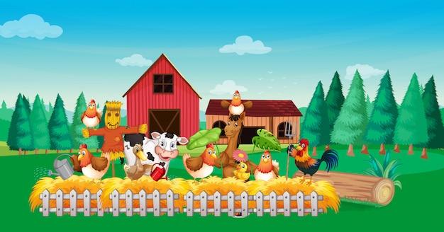Farm scene with animal farm cartoon style Free Vector