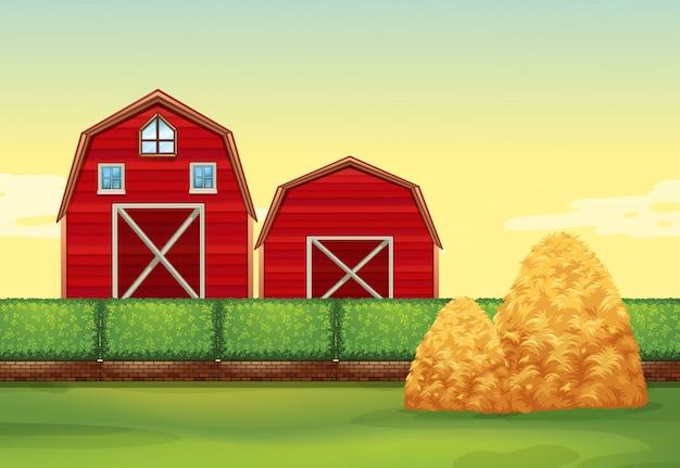 Farm scene with barns and haystacks Free Vector