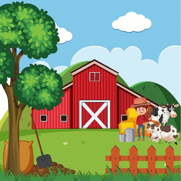 農家と納屋で牛と農場のシーン Premiumベクター
