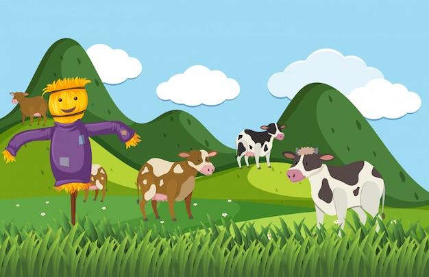 かかしとフィールドに多くの牛と農場のシーン Premiumベクター