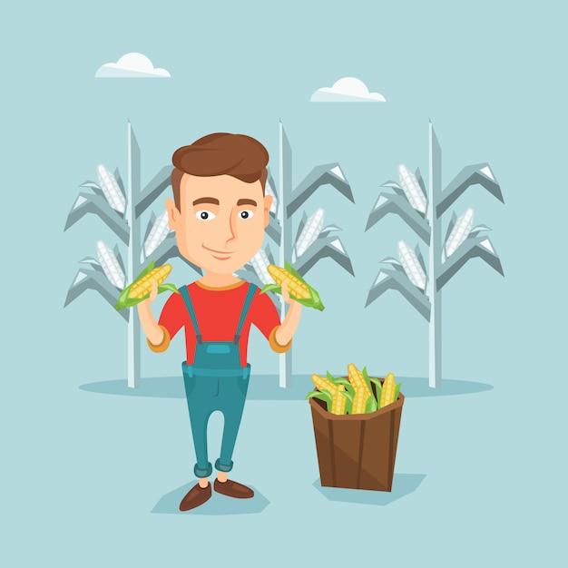 Farmer collecting corn vector illustration. Premium Vector
