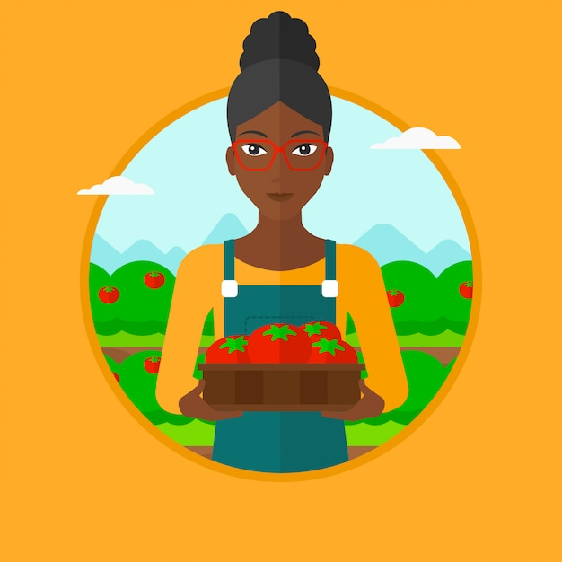 Farmer collecting tomatos vector illustration. Premium Vector