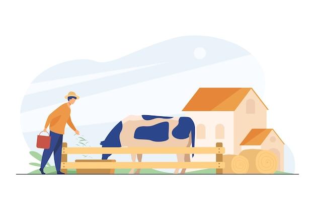 Agricoltore che alimenta mucca con erba. Vettore gratuito