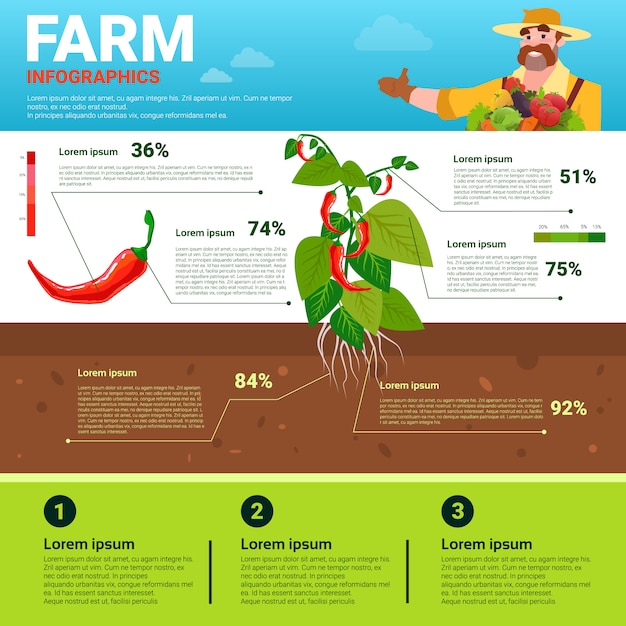Farming infographics eco friendly organic natural vegetable growth farm production banner Premium Vector