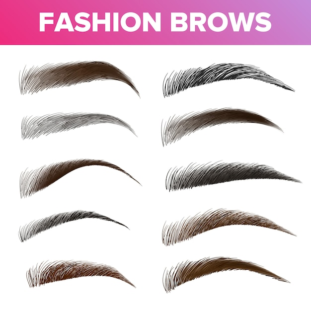 Fashion brows various shapes and types Premium Vector