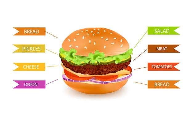 ファーストフードハンバーガー充填インフォグラフィック 無料ベクター
