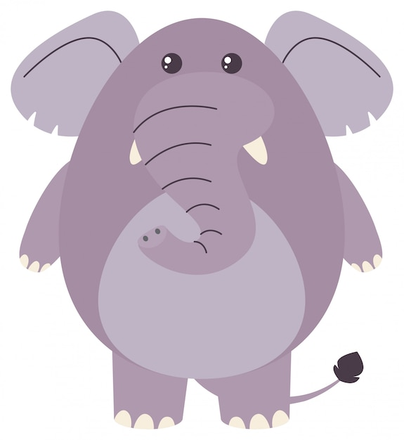 Fat elephant on white background Free Vector