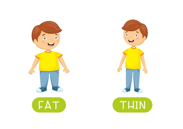 Fat and thin antonyms flashcard Free Vector