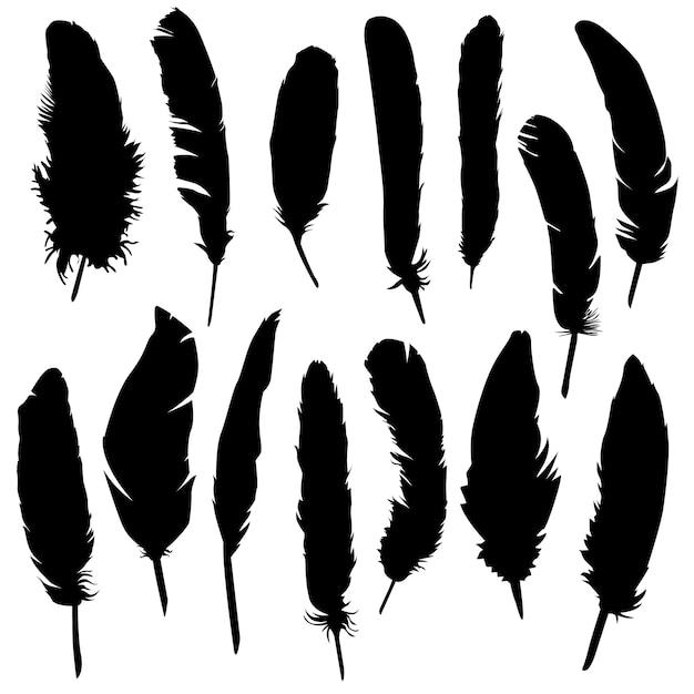 Feather bird animal clip art silhouette vector Premium Vector