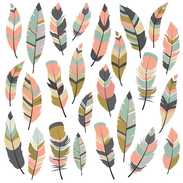 Feather designs collection Free Vector
