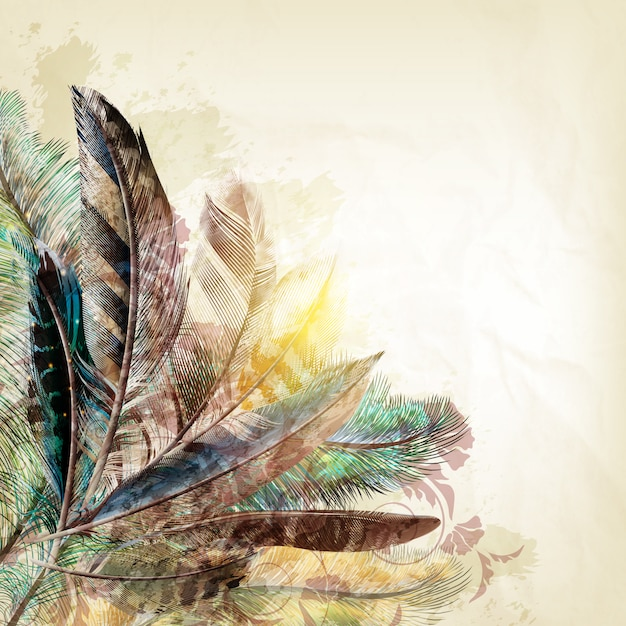 Feathers background design Vector | Premium Download