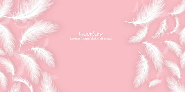 Feathers background Premium Vector
