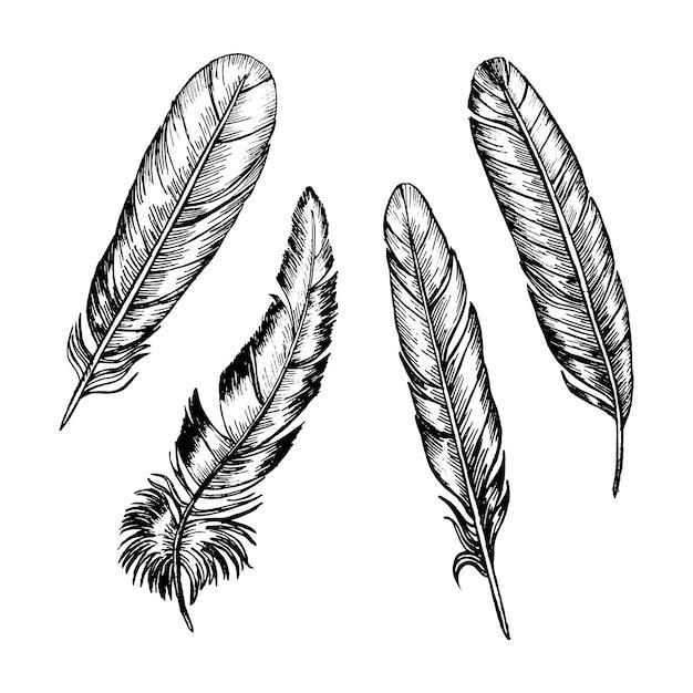 Перья набор руки рисовать эскиз бохо или этническом стиле. Premium векторы