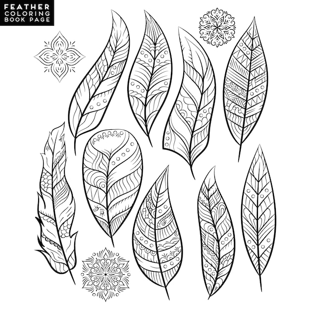 indian feathers template - 626×626