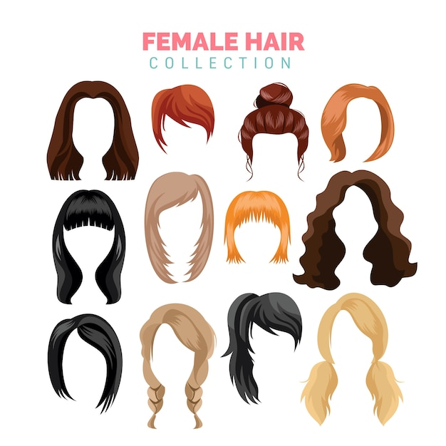 Female hair vector collection Vector | Premium Download