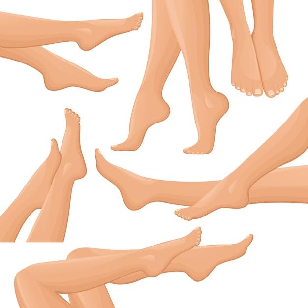 女性の脚セット 無料ベクター