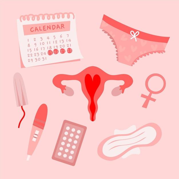 Концепция женской репродуктивной системы Бесплатные векторы