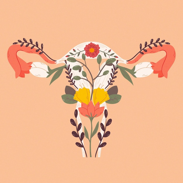 Female reproductive system with flowers Free Vector