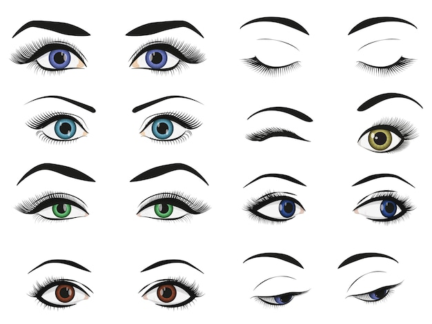 Female woman eyes and brows image collection set. Premium Vector
