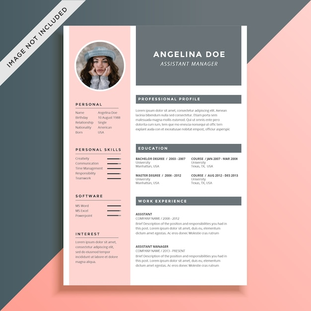 feminine and elegant resume template vector