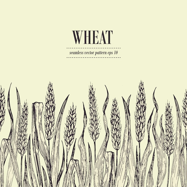 Field of wheat vector seamless pattern. vintage hand drawn illustration. can be use for bread packaging, beer labels Premium Vector