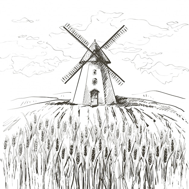 Field of wheat and windmill Premium Vector