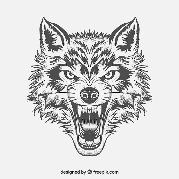 fierce wolf face free vector