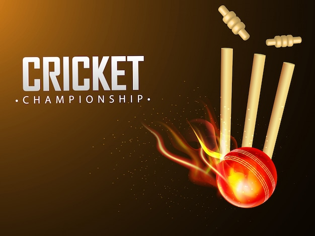 Fiery ball hit the wicket stumps Premium Vector