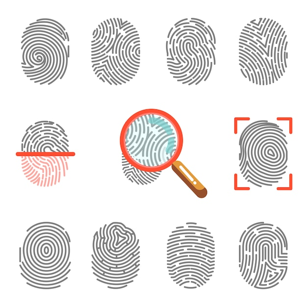 Fingerprints or fingertip print identification Premium Vector
