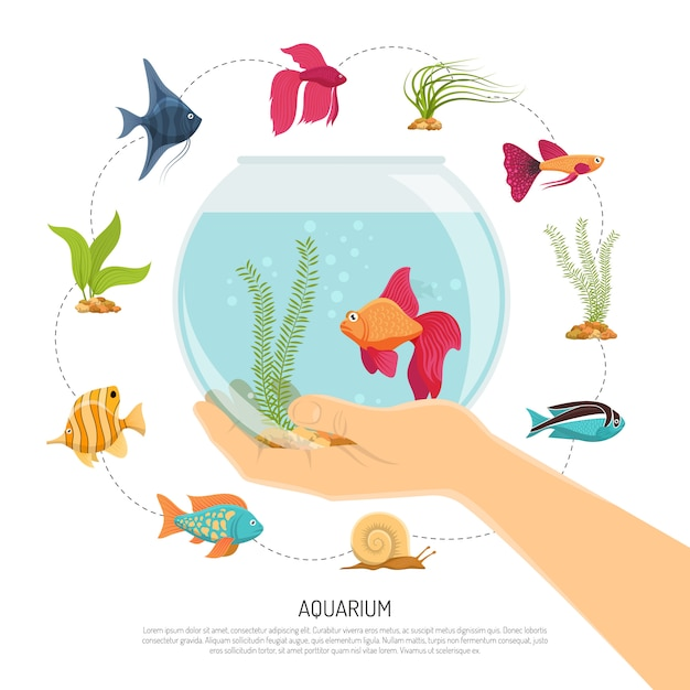 Fish bowl hand composition Free Vector