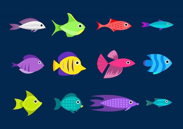 魚のコレクション。漫画スタイル。 12種類の魚のイラスト 無料ベクター