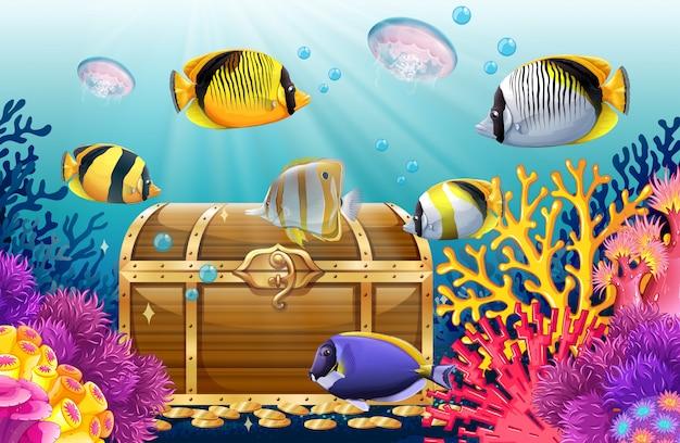 Fish and jellyfish in the sea Premium Vector