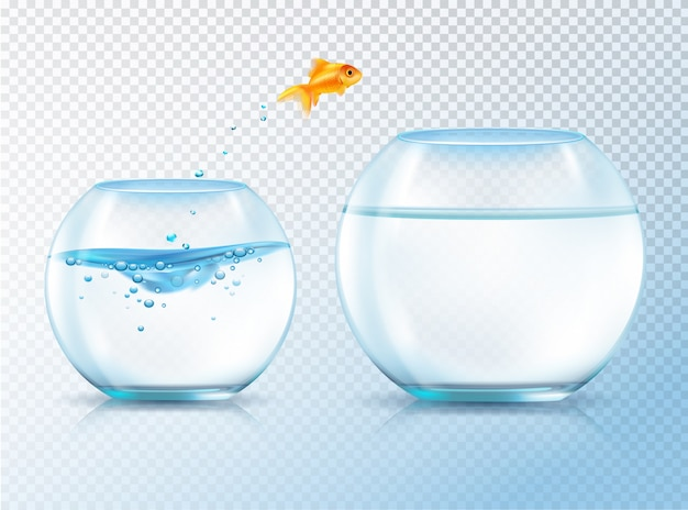 Fish jumping out bowl Free Vector