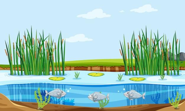 Fish pond nature scene Free Vector
