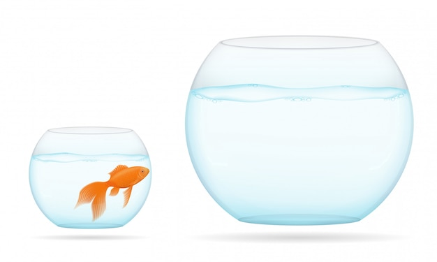 Fish in a transparent aquarium vector illustration Premium Vector
